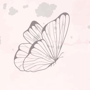Papillon des femmes en transition